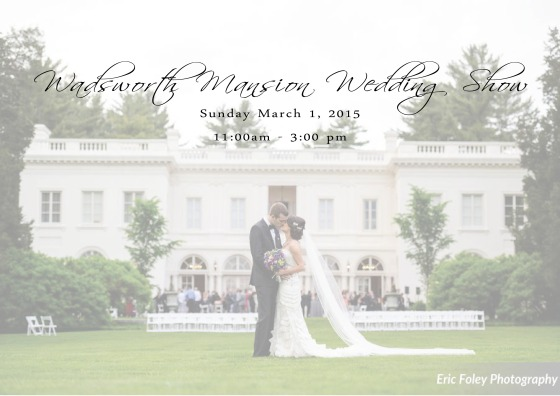 2015 wedding show flyerFB